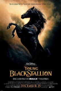 The Young Black Stallion - 2003